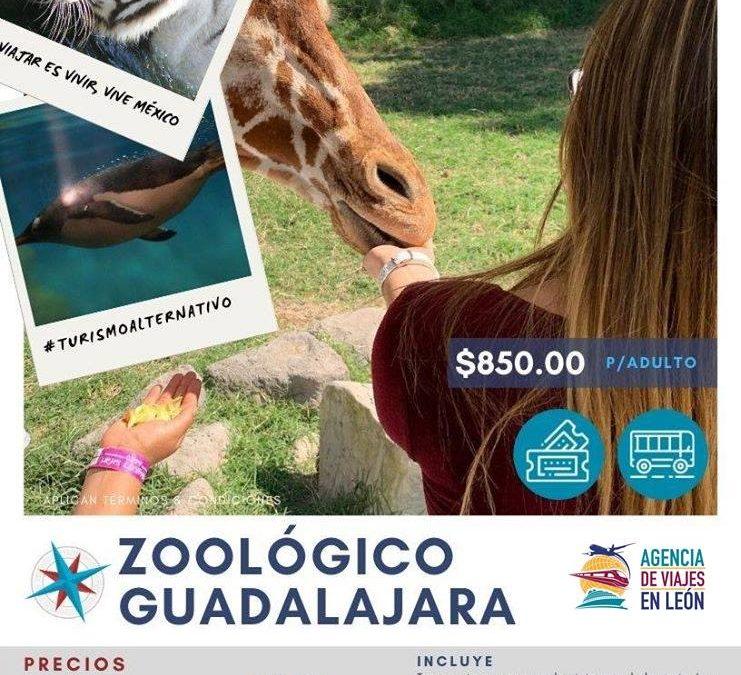 VAMOS AL ZOOLÓGICO DE GUADALAJARA 🧡 2020